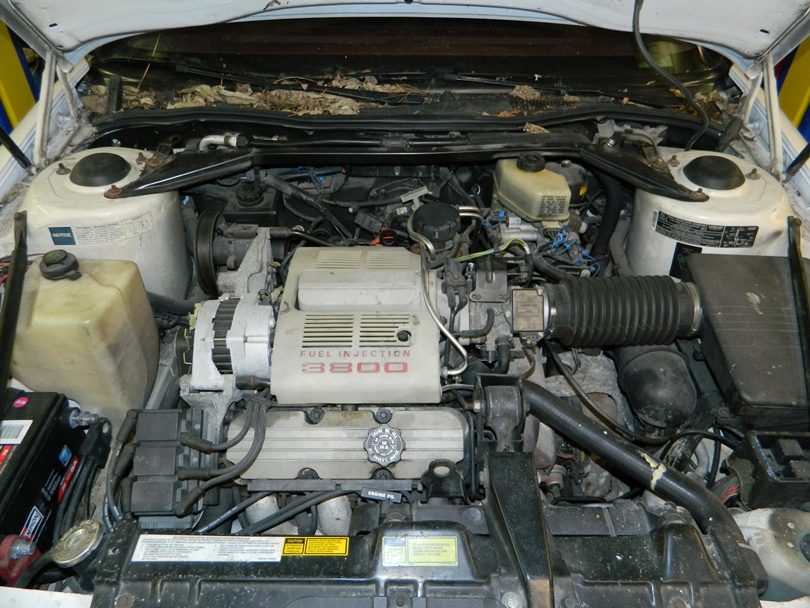 Stock Eng on Gm 3800 Engine